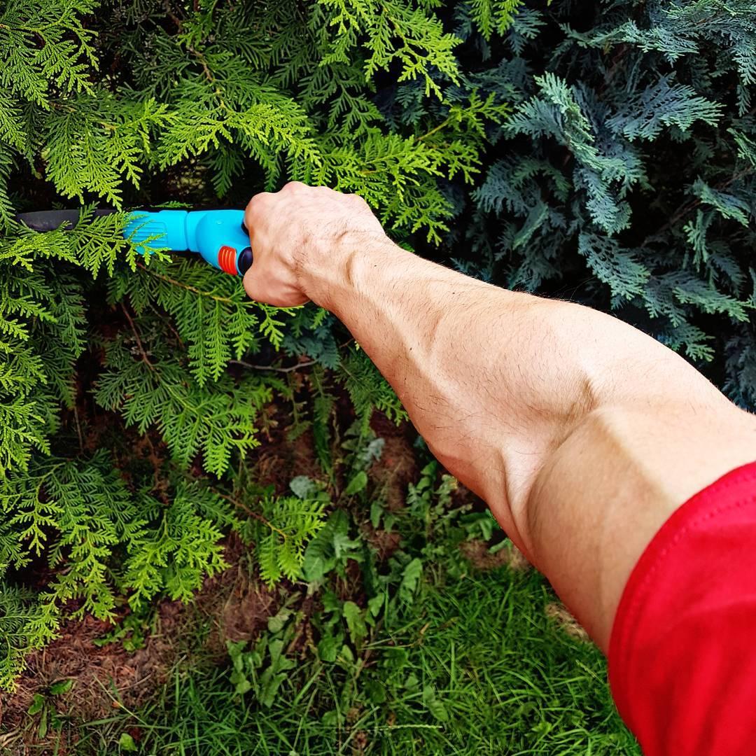 Ein wenig Gartenarbeit lenkt ganz gut ab von den Gedanken, bestimmte Typen per Uppercut zum Jupiter zu befördern… #iron #arms #vendetta #fitness #fit #fitfam #bodybuilding #selfie #me #mcfit #superfit #crunchfit #fitnessfirst #motivation #sport #lifestyle #body #muscles #muskeln #pump #pumped #german #berlin #gym #homegym #nopainnogain #garten