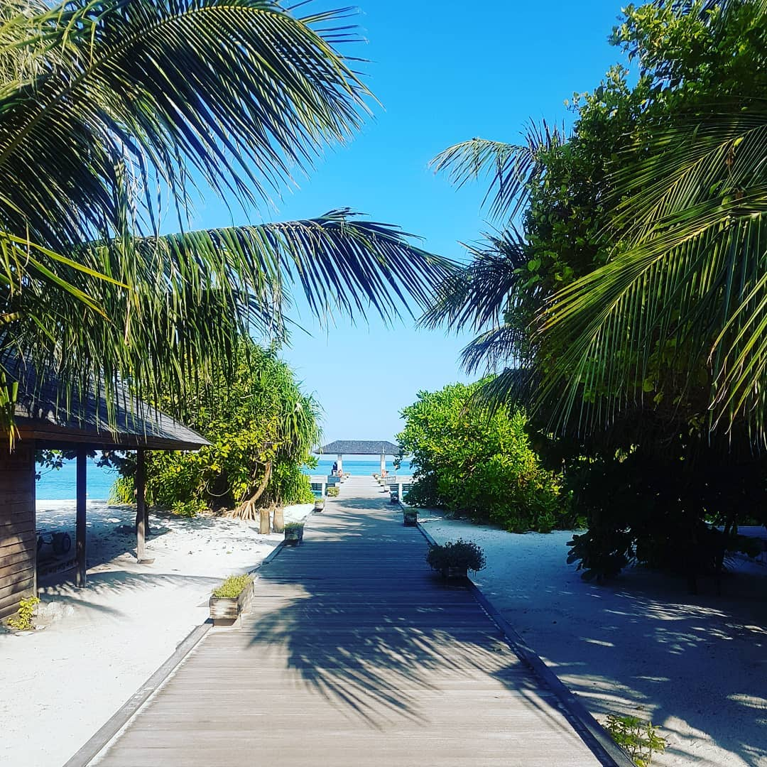Good Morning… this is the way to paradise ☀🌴🏖 . #maledives #malediven #holiday #urlaub #hanimaadhoo #bluesky #summer #ocean #bluewater #hot #awesome #amazing #barefoot #eco #resort #island